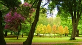 İstanbul'da Gezilmesi, Görülmesi Gereken 10 Park