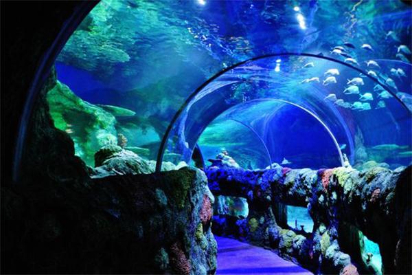 İstanbul'daki Akvaryum ve Hayvanat Bahçeleri